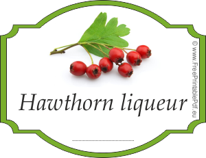 How to make labels for hawthorn liqueur