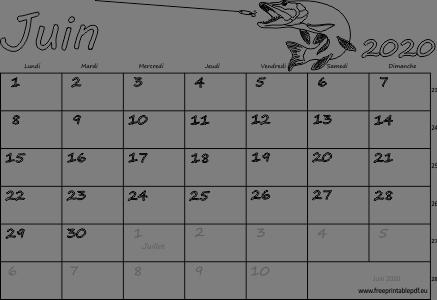 Calendrier mensuel à imprimer juin 2020 | Gratuit PDF imprimable