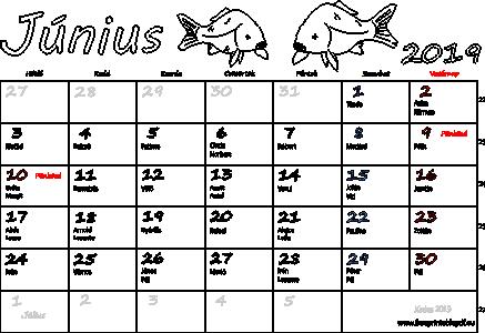 naptár 2019 névnapokkal Naptár Június 2019 nyomtatható | Szabad fájlok PDF nyomtatás naptár 2019 névnapokkal